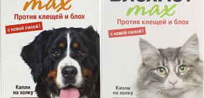 고양이와 개를위한 Blohnet 의미 : 사용 후기