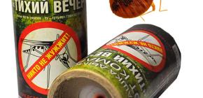 방의 벌레 파괴를위한 살충제 연기 폭탄의 사용