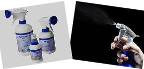 동물 벼룩 살포 및 아파트 치료 : 효과적인 수단 검토