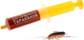 주사기 (겔)의 바퀴벌레 구제 : 마약 및 사용의 뉘앙스